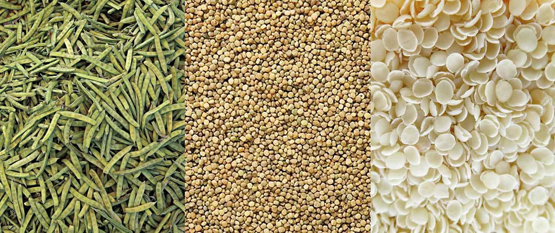 Guar Pods, Seeds und Splits