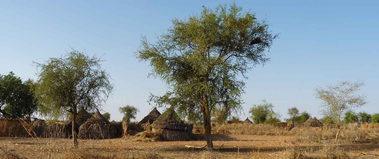 Afrikanisches Dorf in der Sahel Region